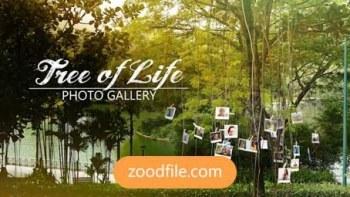 پروژه آماده افترافکت عکس Tree-Of-Life